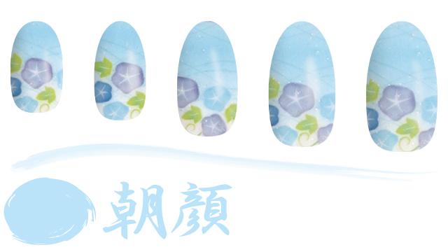 WASO(朝顔)