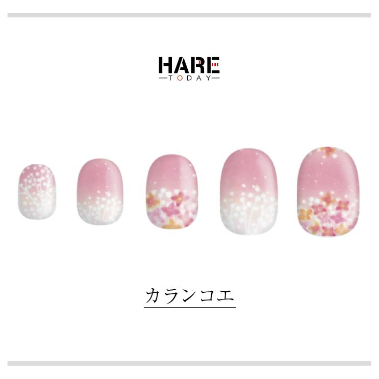 HARE/カランコエ ネイルチップイメージ