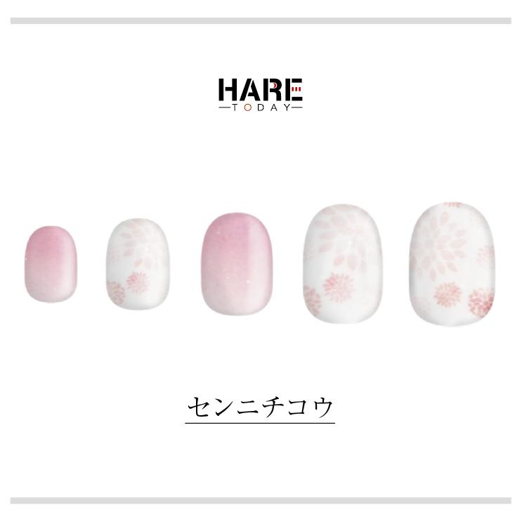 HARE/センニチコウ ネイルチップイメージ