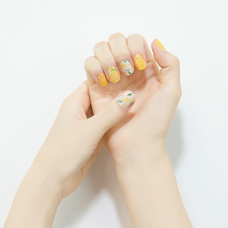 HARERU/檸檬 貼り付けイメージ
